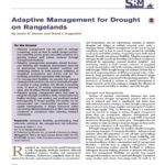 "Screen shot of PDF, ""Adaptive Management for Drought on Rangelands"" by Derner et al."