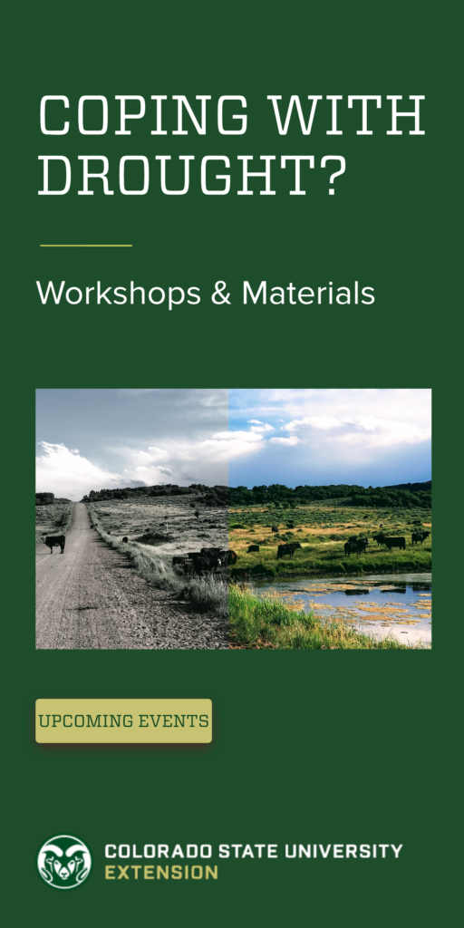 "Green banner with the text ""coping with drought? workshops and materials"" includes the Colorado State University logo and a link to upcoming workshops."
