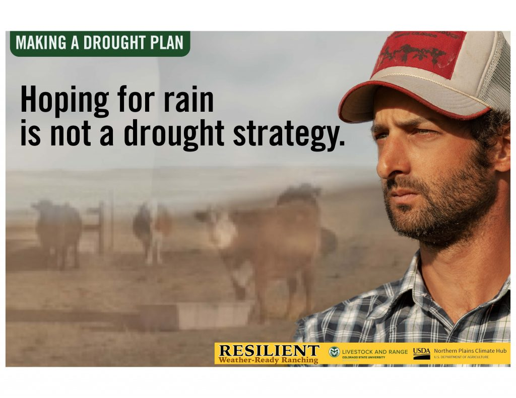 """Infographic with a man looking at the horizon and the text """"hoping for rain is not a drought strategy"""""""