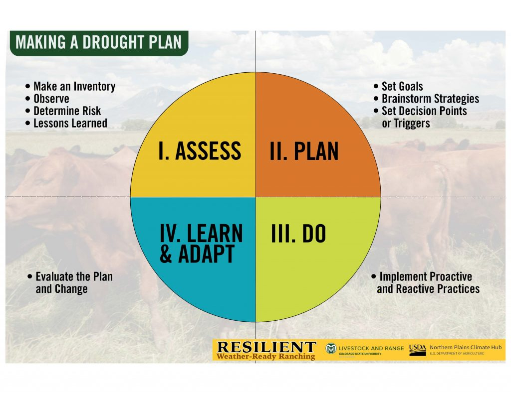 """Graphic of a drought planning process including """"planning"""", """"doing"""", """"learning"""" and """"assessing"""""""